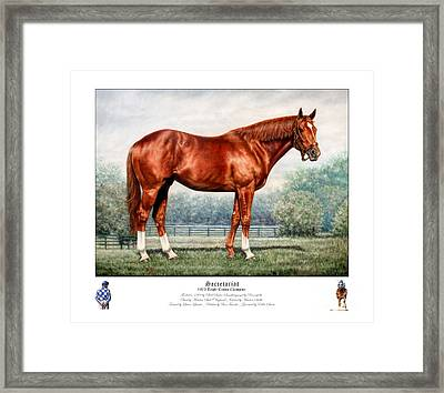 Secretariat Triple Crown Champion Framed Print by Thomas Allen Pauly