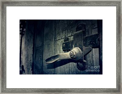 Secrets Within Framed Print by Trish Mistric