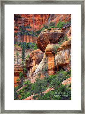 Sedona Stripes Framed Print by Carol Groenen