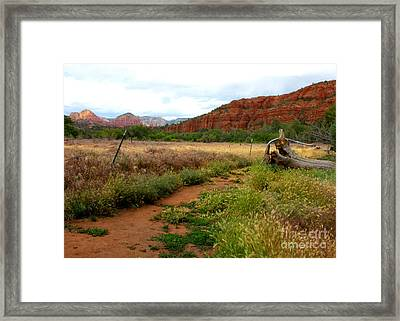 Sedona Trail Framed Print by Carol Groenen