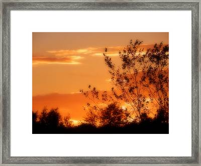 See You Next Summer Framed Print by Karen Cook