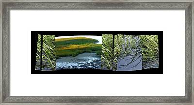 Seeing Seeing Framed Print by Susie Capezzone