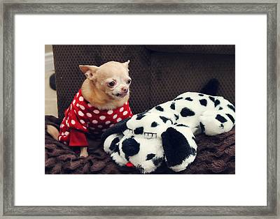 Seeing Spots Framed Print by Laurie Search