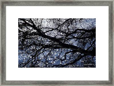 Seeing Stars Framed Print by Donna Blackhall