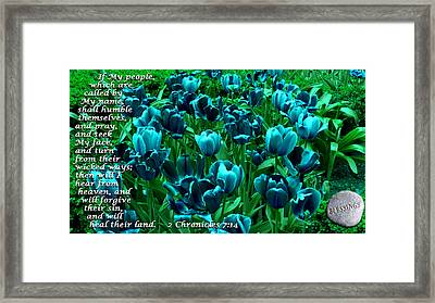 Seek My Face Framed Print by Terry Wallace