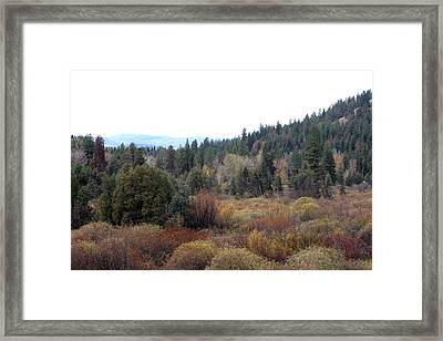 Seeley Lake Framed Print by Larry Stolle
