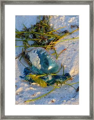 Self Portrait In Man O War On Navarre Beach Framed Print by Jeff at JSJ Photography