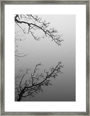 Self-reflection Framed Print by Luke Moore