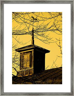 Sepiatone Cupola Framed Print by Debbie Finley