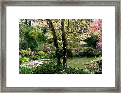 Serene Garden Retreat Framed Print by Carol Groenen
