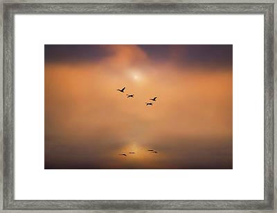 Serene Tranquility Framed Print by Adrian Campfield