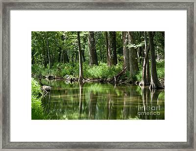 Serenity Framed Print by Barbara Shallue