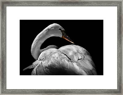 Serenity Framed Print by Debra and Dave Vanderlaan