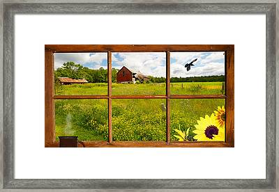Serenity. Framed Print by Kelly Nelson
