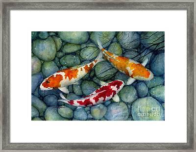 Serenity Koi Framed Print by Hailey E Herrera