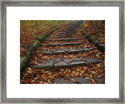 Serenity Framed Print by James Peterson