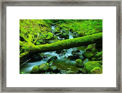 Serenity On The Rocks Framed Print by Jeff Swan