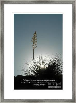 Serenity Prayer Print -- Yucca Sunburst Framed Print by Spirit Greetings