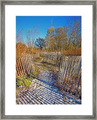 Serenity Trail.... Framed Print by Nina Stavlund