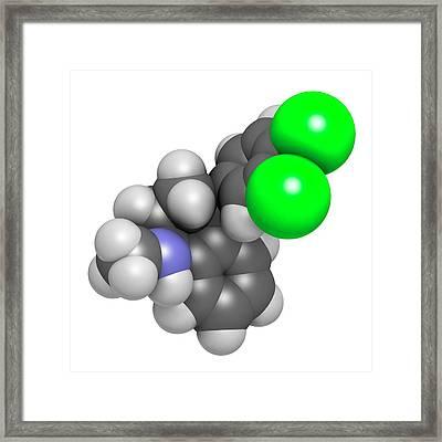 Sertraline Antidepressant Drug Molecule Framed Print by Molekuul
