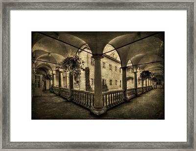 Set Me Free Framed Print by Evelina Kremsdorf