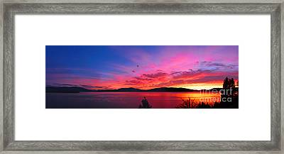 Setting The Night On Fire Framed Print by Beve Brown-Clark Photography