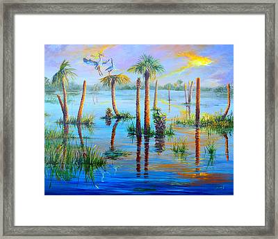 Settling In Viera Framed Print by AnnaJo Vahle