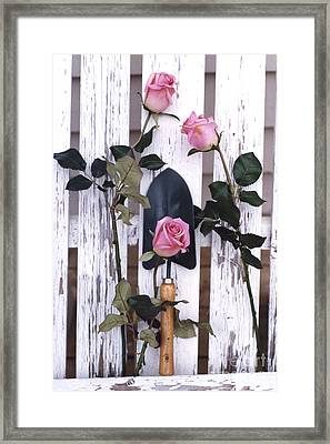 Shabby Chic Cottage Romantic Pink Roses Garden Tools  Framed Print by Kathy Fornal