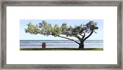 Shade Tree Panoramic Framed Print by Mike McGlothlen