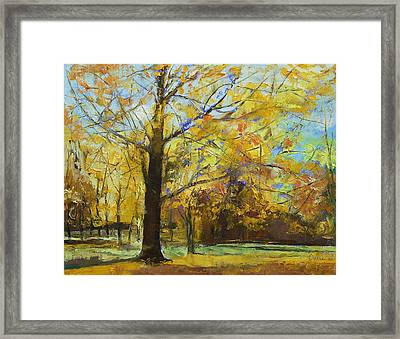 Shades Of Autumn Framed Print by Michael Creese