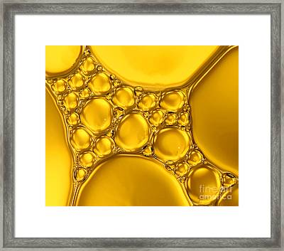 Shades Of Gold Framed Print by Karin Ubeleis-Jones