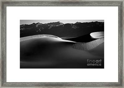Shadow And Light Framed Print by Jennifer Magallon