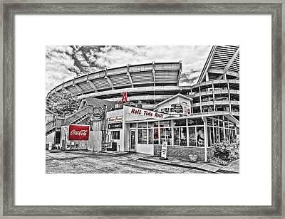Shadow Of The Stadium Framed Print by Scott Pellegrin