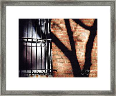Shadow On The Wall Framed Print by Sarah Loft