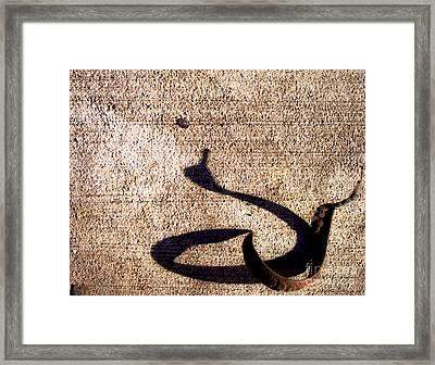 Shadow Play - Goose Framed Print by James Aiken