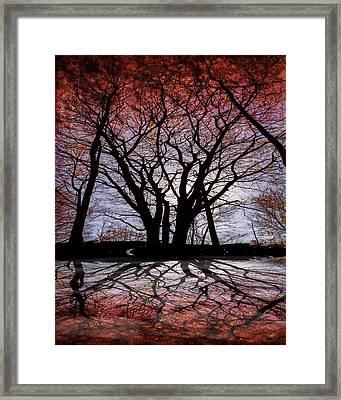 Shadow Secrets Framed Print by Bob Orsillo