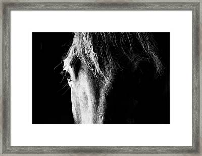 Shadows And Light Framed Print by Shelby  Young