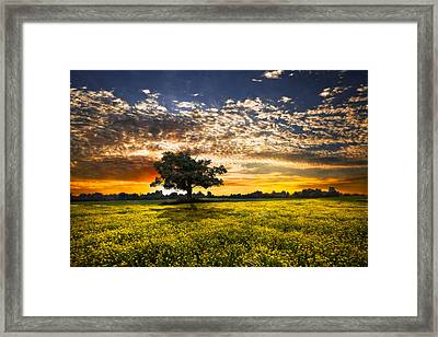 Shadows At Sunset Framed Print by Debra and Dave Vanderlaan