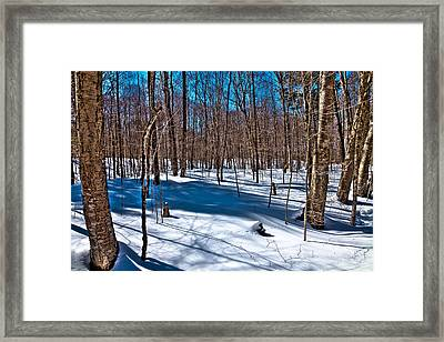 Shadows In The Snow On Rondaxe Road Framed Print by David Patterson