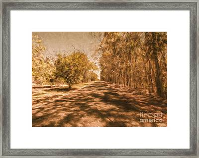 Shadows On Autumn Lane Framed Print by Jorgo Photography - Wall Art Gallery