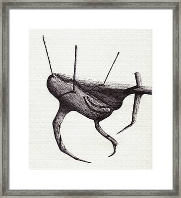 Shadows Terrestrial Framed Print by Giuseppe Epifani