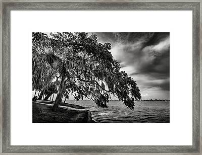 Shady Oak Framed Print by Marvin Spates