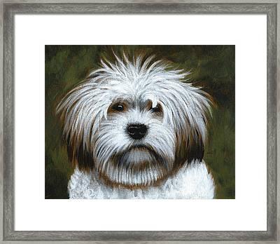 Shaggy ... Dog Art Painting Framed Print by Amy Giacomelli