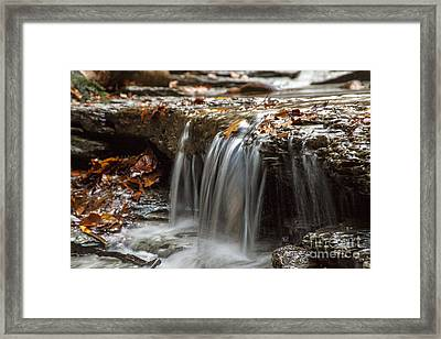 Shale Creek In Autumn Framed Print by Darleen Stry