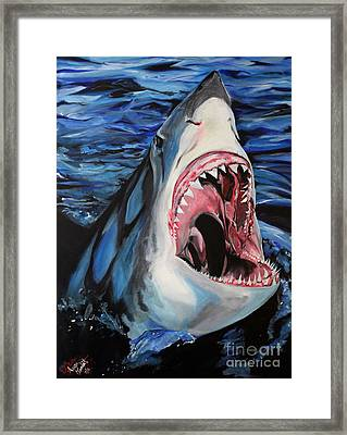 Sharks Get Smart Framed Print by Lambert Aaron