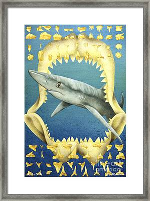 Sharks Truth... Framed Print by Will Bullas