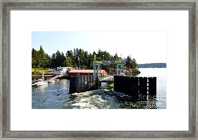 Shaw Island Ferry Terminal Framed Print by Tanya  Searcy