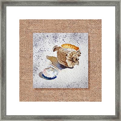 She Sells Sea Shells Decorative Collage Framed Print by Irina Sztukowski