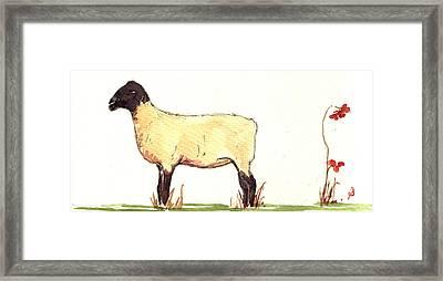 Sheep Black White Framed Print by Juan  Bosco