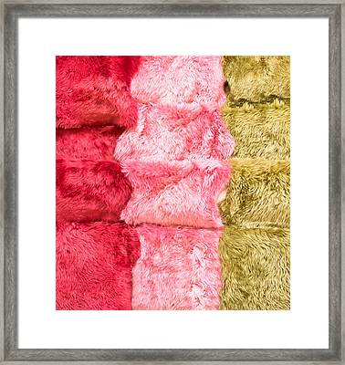 Sheepskin Rugs Framed Print by Tom Gowanlock